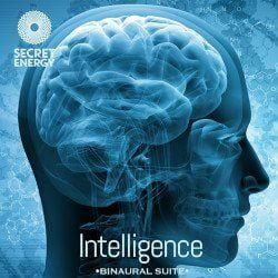 Intelligence_Frequency_Suite 2