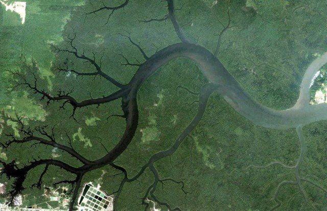 kuching-malaysia-google-earth-fractals-e1440586294502